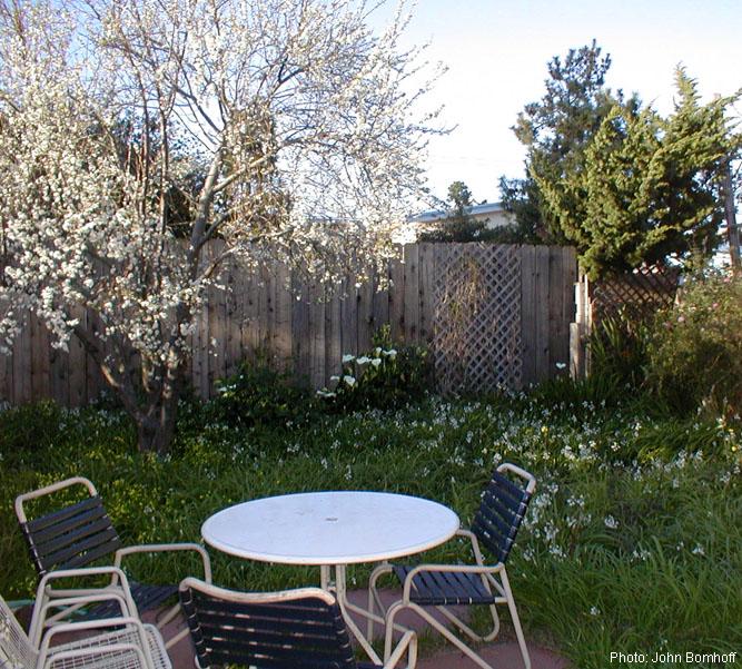 Julia Garden, Spring